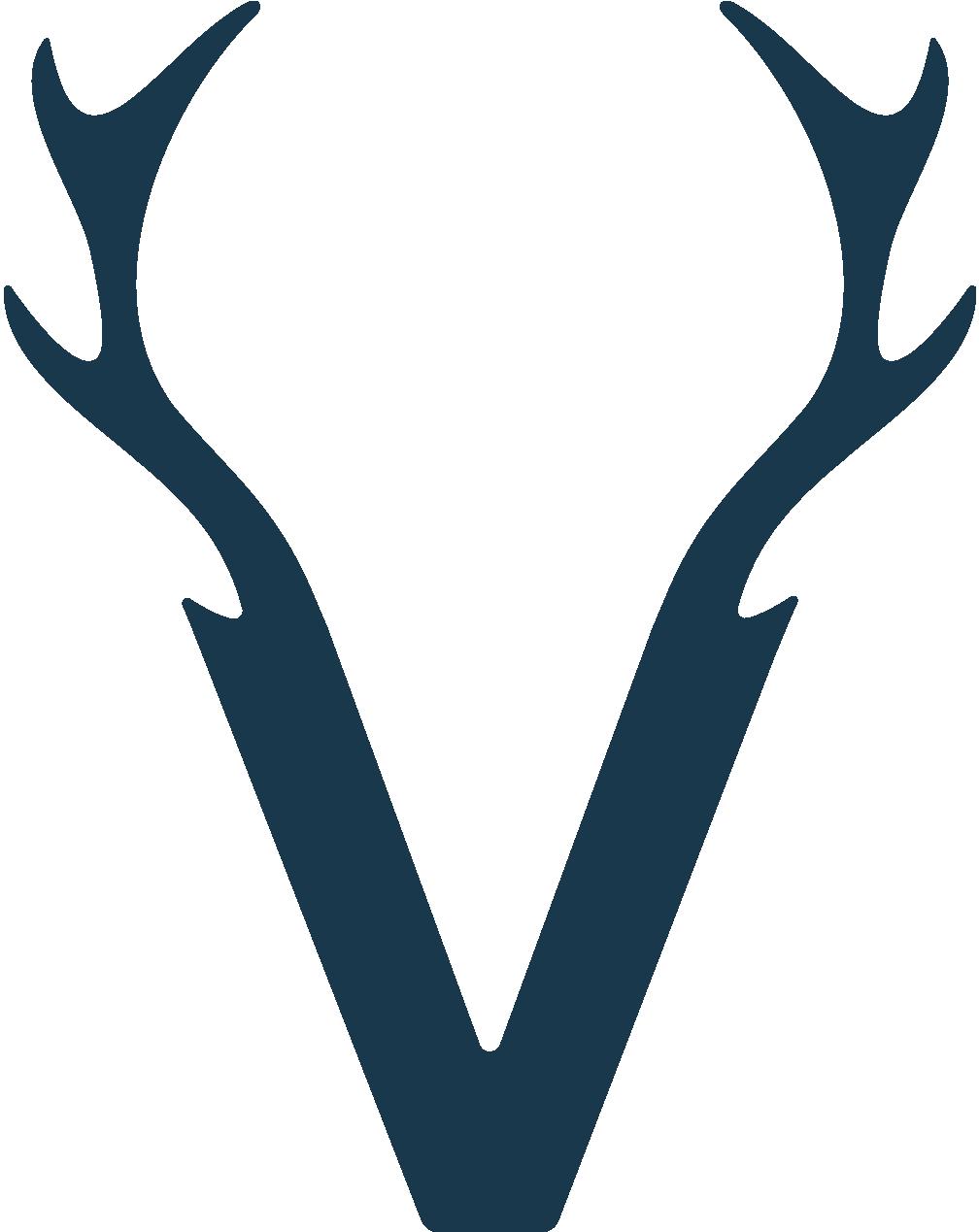 Vincent Agencia Logo Fondo